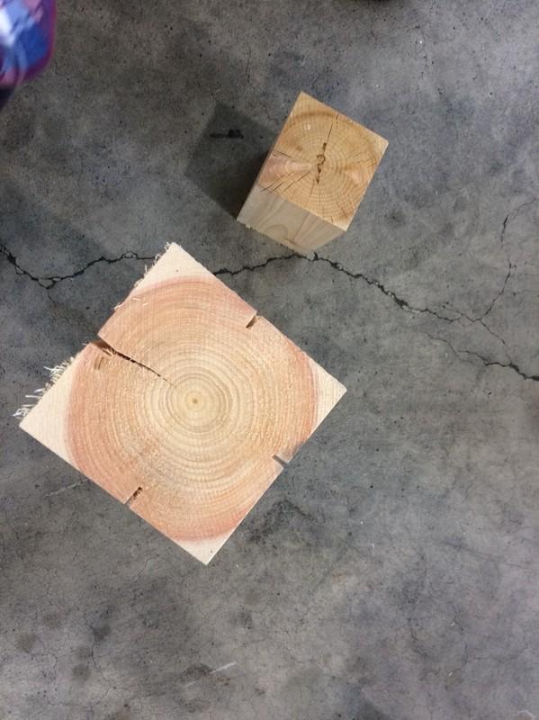 木材見学_190418_0008.jpg