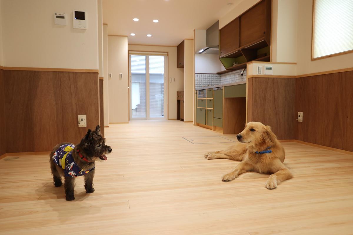 愛犬とともに暮らす家